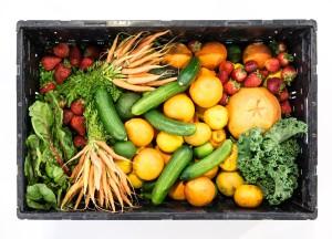 Guide alimentaire complet pour une prise de masse!