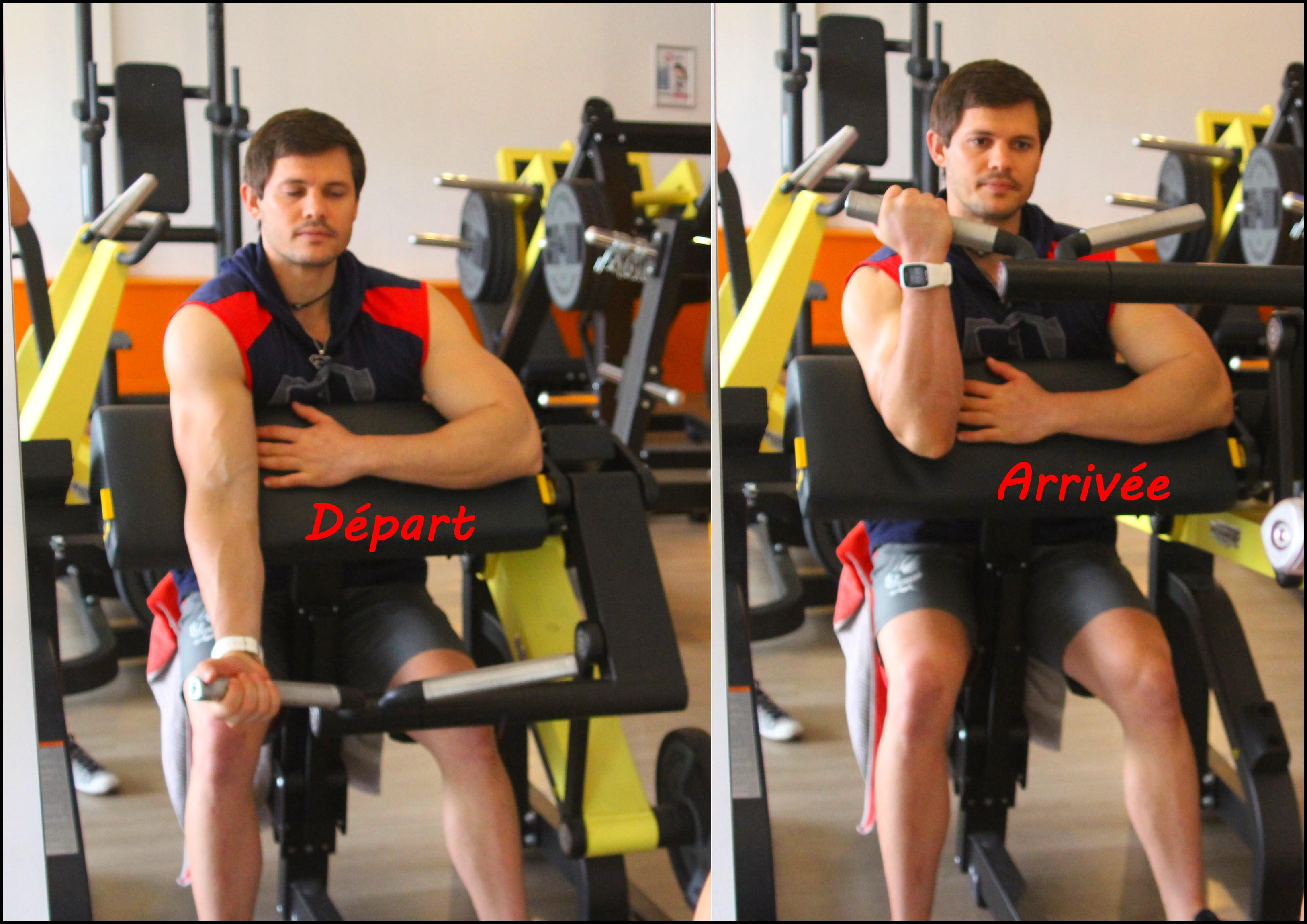 programme biceps triceps superset