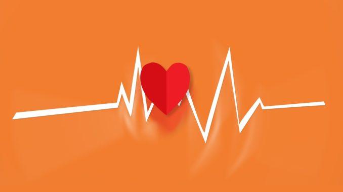 qu'est ce que le cardio training